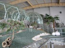 旅順・蛇博物館3