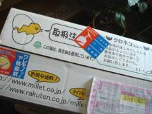 無農薬のミレー1