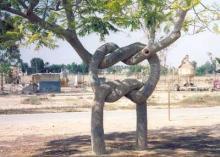 このー木なんの木?2