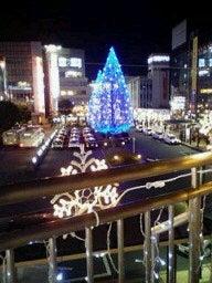 …evergreen…-20081225194857.jpg