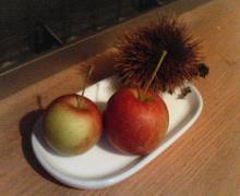 apple&mallon