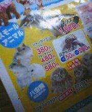 20050527_1953_0000.jpg