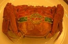 陽澄湖産の上海蟹