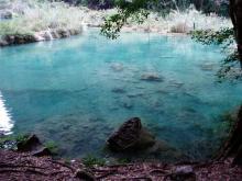 自然のプール