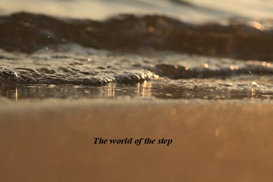 The world of the step