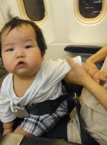 mini seatbelt