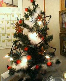 飾ったツリー