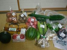 新鮮な地場野菜、食べきれない量 GET☆