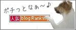 人気ブログランキングにポチっ!
