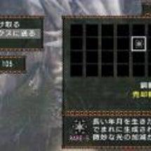 【MHP2G】初めて…