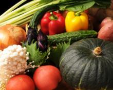 飲食店サポート事業を営む谷口社長ブログ (アウトソーシング・コンサルティング・販促支援プランニング・採用支援etc)-無農薬野菜たち