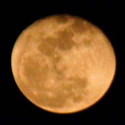 ノノ352日-moon
