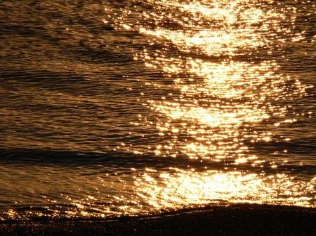 黄金色の波