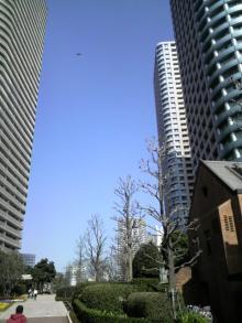 OKDELUX                            ~東京タワーのふもとで働くSkateBoarder社長のブログ-SUNNY