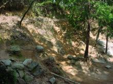 下の谷の西側斜面