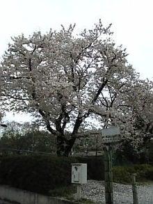 Image155.jpg