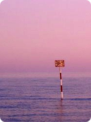 Guidoの海