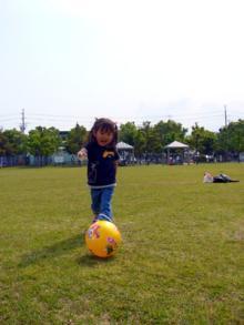 公園ボール