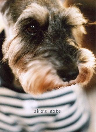 siro's note-ワンコ