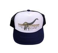 恐竜グッズ