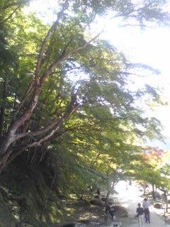 香嵐渓06