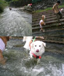 冷たくってもキレイな川だったよね(^_-)-☆