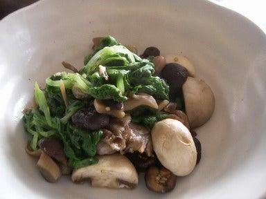 白菜菜とマッシュルームの蒸し煮