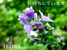 Dress Shop ISORI表参道店