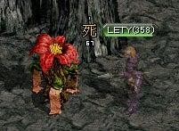 4-5 神秘の赤い花④7