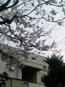 08-03-25_17-41.jpg