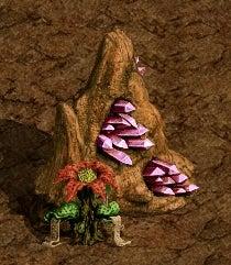 4-5 神秘の赤い花②(宝石鑑定士の資格所得)6