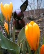 春のにおいクンクン