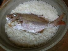 与太呂 鯛めし1