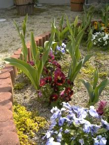 教会の庭2