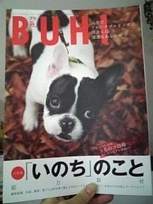犬の健康を考えるDecoのblog-090223_120956.jpg