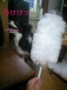 小春にっき-081231_1659~0001-0001.jpg