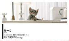 猫ペット名刺