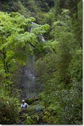 うなぎ滝2(人物入り)