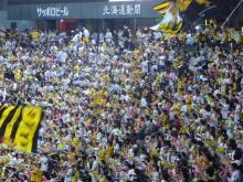 「試される大地北海道」を応援するBlog-タイガース