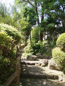 海蔵寺の石段