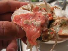 カルマンギアのある生活-セイコ蟹の内子と蟹味噌
