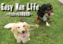Easy Wan Life~わんちゃんの家庭教師~