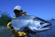 Fishing Blog OFFSHORE CRAZY! ~ 夢は一発大物!   鮪だ!鰤だ!大政だ!巨カンパだ!大鯛だ!なんでもこ~い!-the power of nature