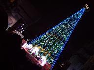 USJのクリスマスツリー6