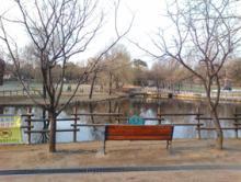 オーブラ公園2