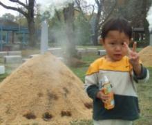幸せな日々☆-200811231