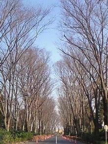 春夏秋☆ふゆ日記-200901121153000.jpg