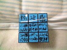 IZANAI日記 in 佐渡和童-CA3A0170.JPG