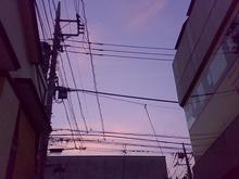 20070826.jpg
