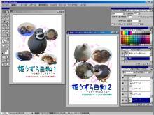 写真集金と銀表紙(謎)